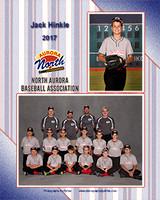 north aurora baseball